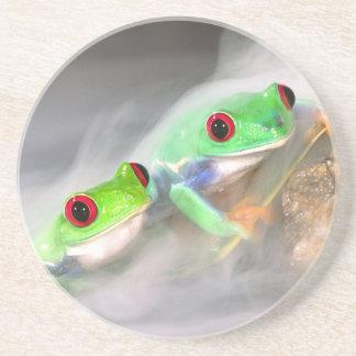Red Eye Treefrog im Nebel, Agalychinis 2 Untersetzer