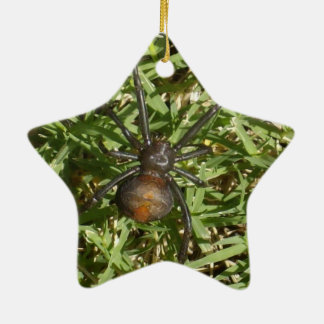 Redback-Spinne auf grünem Gras, Keramik Ornament