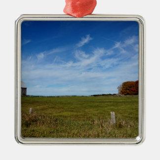 Regen-Bauernhof-St- Josephinsel Silbernes Ornament