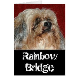 Regenbogen-Brücke - mein Freund Karte