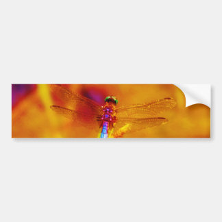 Regenbogen-Libelle auf Bernstein und fuschia Autoaufkleber
