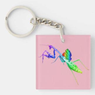 Regenbogen-Mantis und Kröte Schlüsselanhänger