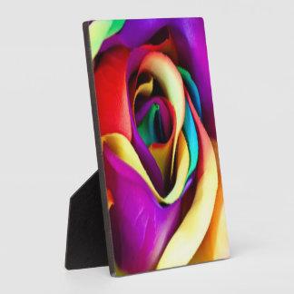 Regenbogen-Rose botanisch Fotoplatte