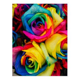 Regenbogen-Rosen Postkarte