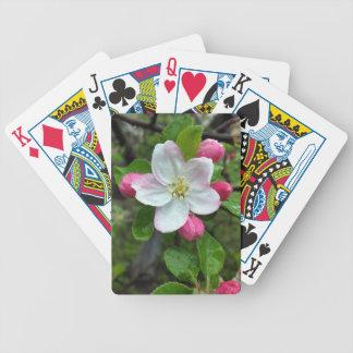 Regentropfen auf weniger Blume Bicycle Spielkarten