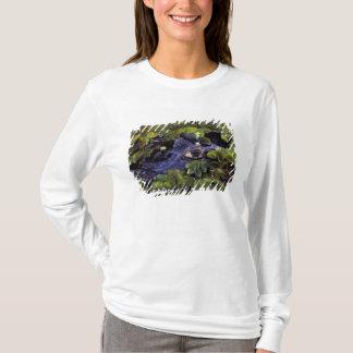 Regenwald Südamerikas, Brasilien, Amazonas, 3 T-Shirt