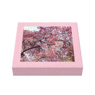 Regnen der rosa Blumen Leinwanddruck