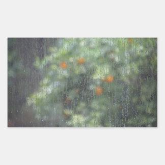 Regnerische Orangen 1 Rechteckiger Aufkleber