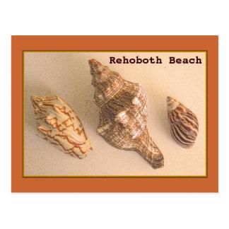 Rehoboth Muschel-Postkarte Postkarten