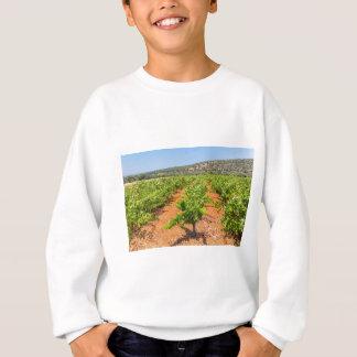 Reihen der Trauben-Pflanzen mit Berg in Sweatshirt