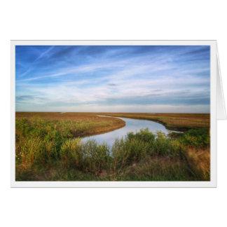 Reiher-Insel, Matagorda, TX Grußkarte