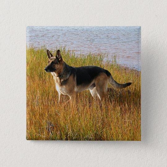 Reines gezüchtetes Schäferhund-Foto auf Knopf Quadratischer Button 5,1 Cm