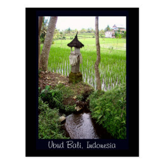 Reis-Paddy, Tempel, Ubud Bali, Indonesien Postkarten