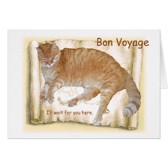 Reise-orange Katze auf Karte
