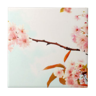 Reizende japanische Kirschblüte Kleine Quadratische Fliese