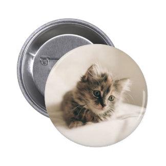 Reizende süße Katzen-Kätzchen-Miezekatze Runder Button 5,1 Cm
