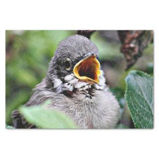 reizender Vogel Seidenpapier
