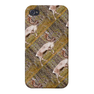 Ren, das in Wald geht iPhone 4/4S Hülle