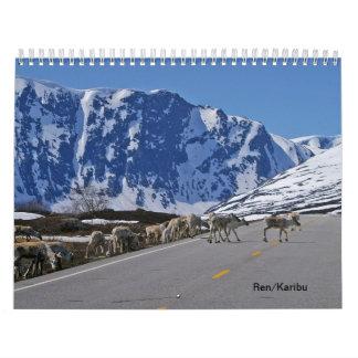 Ren/Karibu Abreißkalender