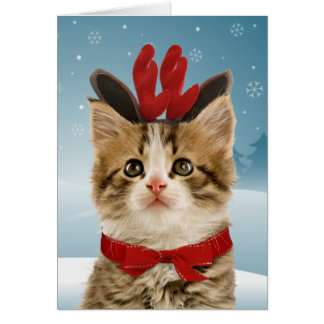 Ren-Kätzchen-Weihnachtskarte Karte
