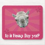 Rétro rayon de soleil de chameau drôle et journée  tapis de souris