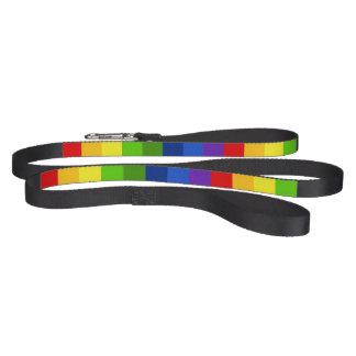 Retro Regenbogen-Stolz-Streifen Haustierleine