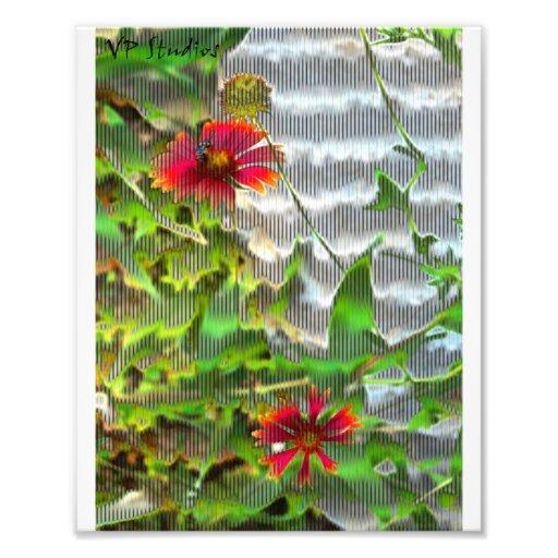 rétros fleurs  tirage photo