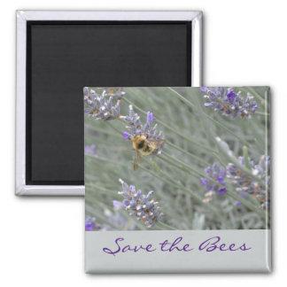 Retten Sie die Bienen… Lavendel-Magnet Quadratischer Magnet
