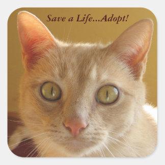 Retten Sie ein Leben… adoptieren! Quadratischer Aufkleber