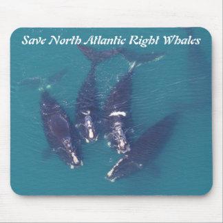 Retten Sie Nordatlantik rechte Wale durch Mousepads