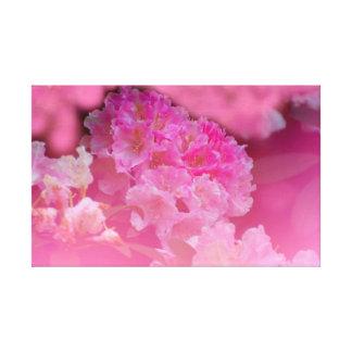 Rhododendron in rosa, Nahaufnahme, Leinwanddruck