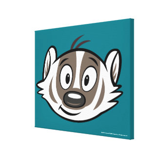 Ricky Raccoon | Boomer Badger Face Leinwanddruck