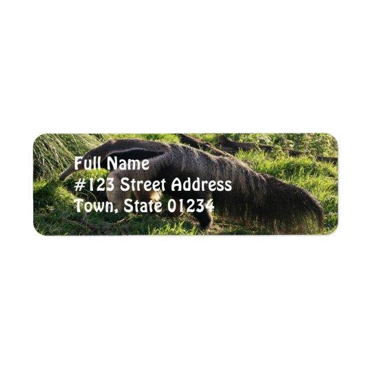 Riesiger Anteater-Rücksendeadresse-Aufkleber Kleiner Adressaufkleber