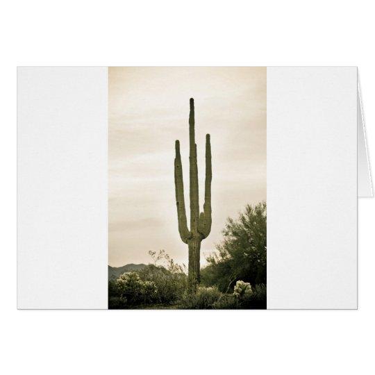 Riesiges Saguaro Sonoran Wüsten-Porträt Grußkarte
