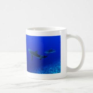 Riff-Haifische auf der Great Barrier Reef Tasse