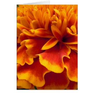 Ringelblumen-Blumenblätter Grußkarte