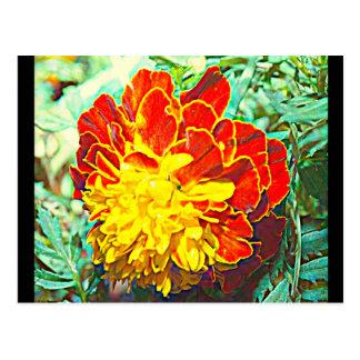 Ringelblumen-Blumenemblem Postkarte