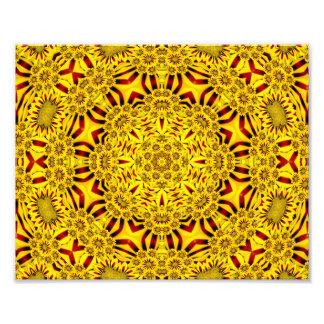 Ringelblumen-bunte Foto-Drucke Fotodruck