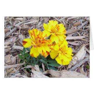 Ringelblumen der Mutter Tages Grußkarte