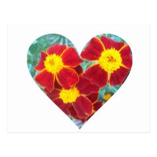 Ringelblumen-Herz Postkarte