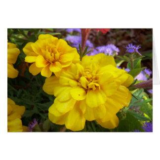 Ringelblumen-leere Gruß-/Anmerkungs-Karte Grußkarte