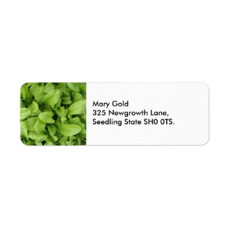 Ringelblumen-Sämlings-Adressen-Etiketten Rücksende Aufkleber