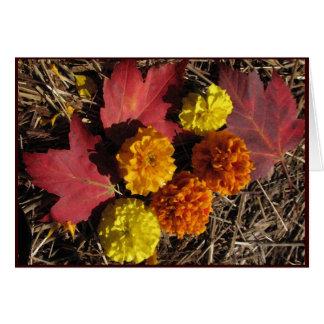 Ringelblumen und Ahorn-Blätter Grußkarte