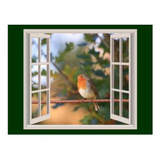Robin-Vogel am Fenster Postkarte
