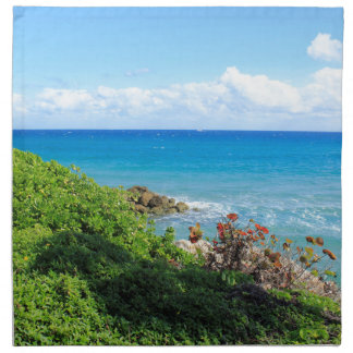 rocky-foliage-coast-deerfield-beach-4s6490 stoffserviette