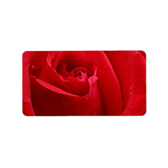 Romantische Rote Rose Adressaufkleber