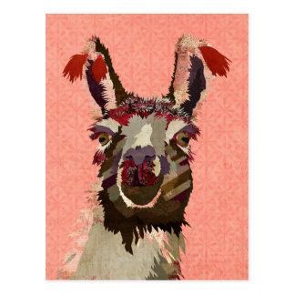 ROSA ALPAKA Postkarte