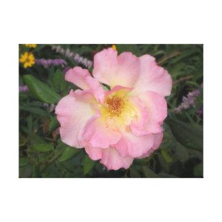 Rosa Arizona-Blume Leinwanddruck