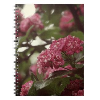 Rosa Blumen Blosoom Foto-Notizbuch (80 Seiten B&W) Notizblock