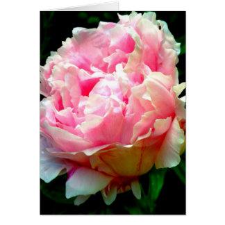 Rosa Blumen-freier Raum Karte